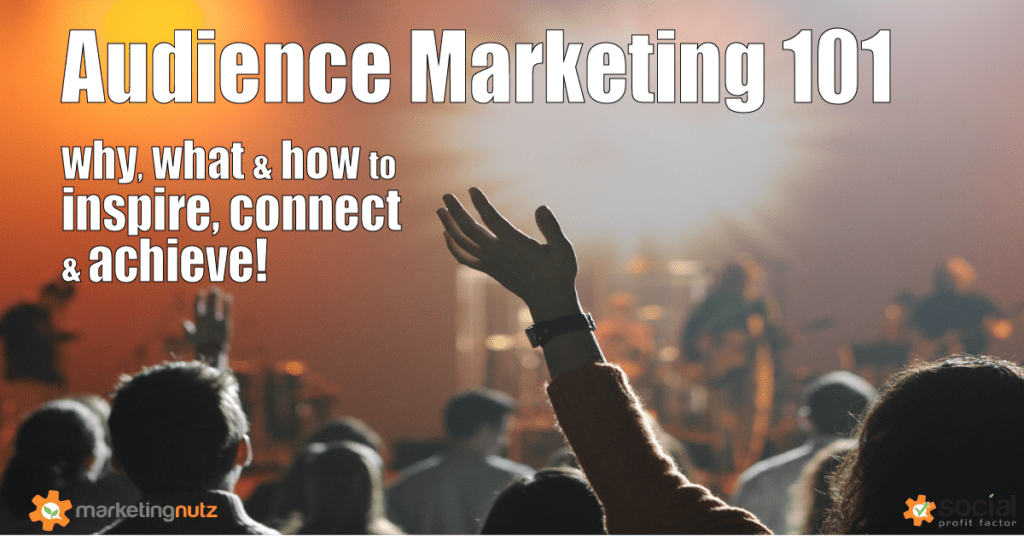 Audience Marketing Strategy Social Media Digital Marketing Agency