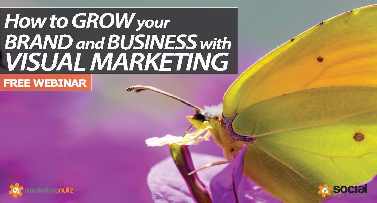 FREE Visual Marketing Webinar (instant access)