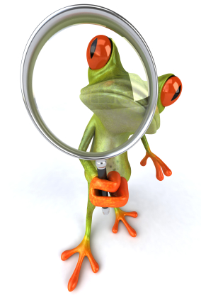 iStock 000009303510XSmall 15 Reasons to Be Your Own Social Business Frog
