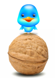 twitter bird on nut Social Media in a Nut Shell