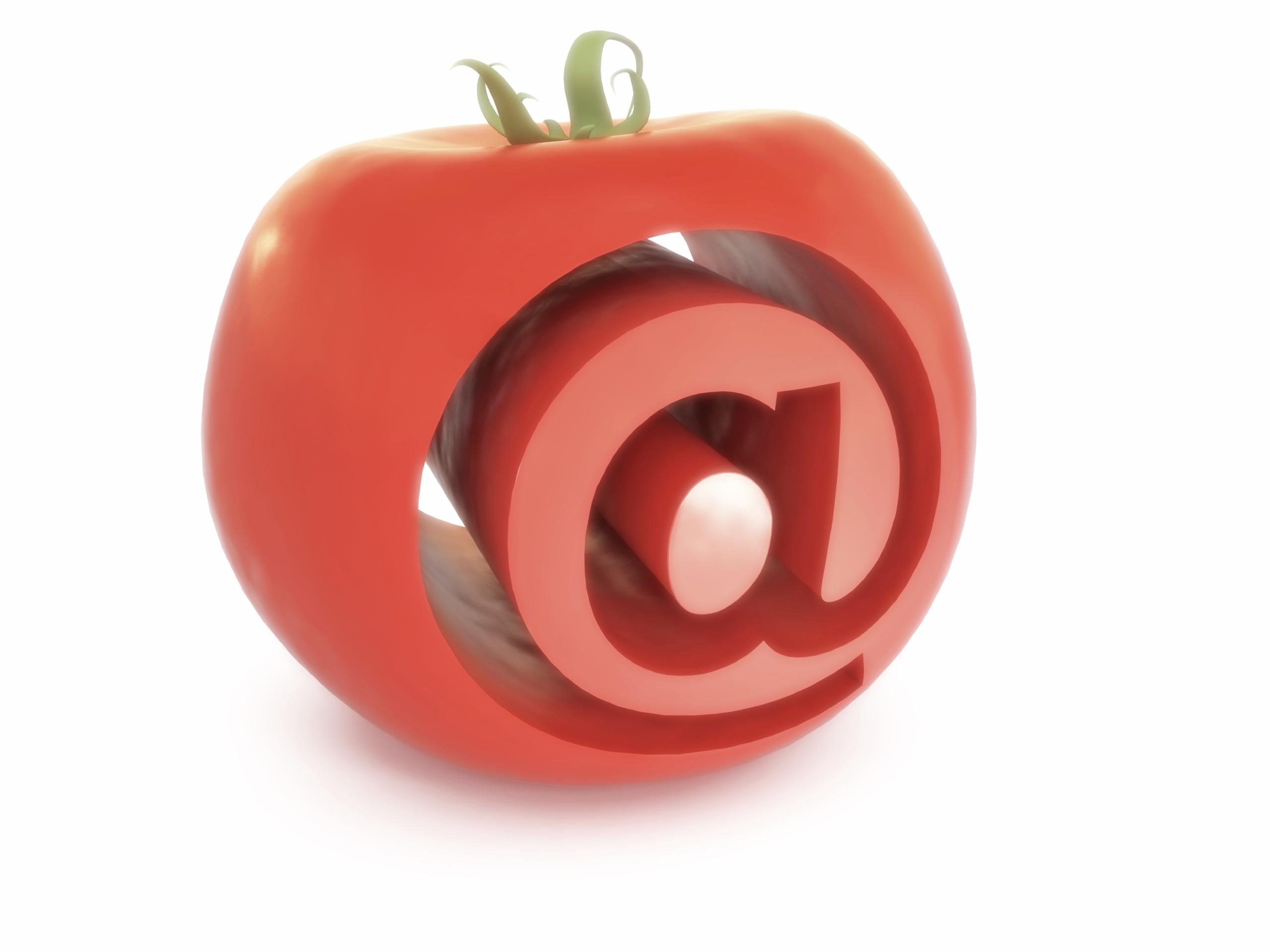 email marketing social media strategies