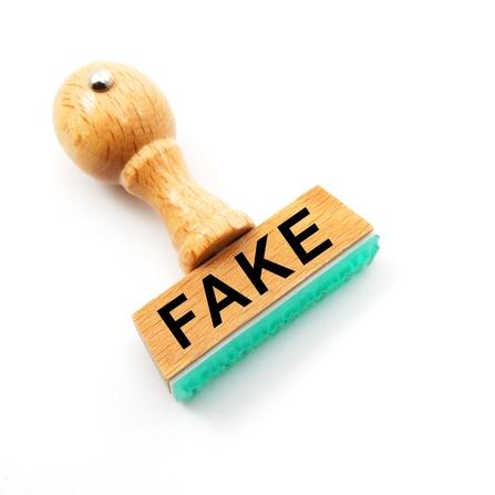 fake fake social media community