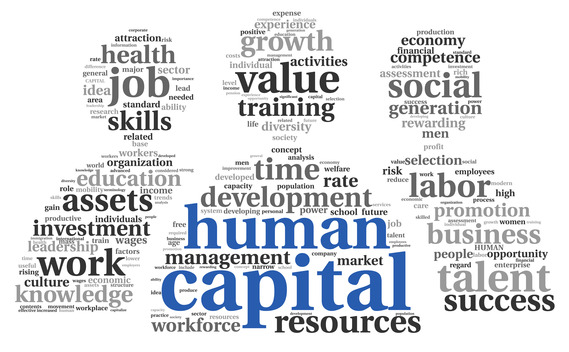 social business human capital asset ibm